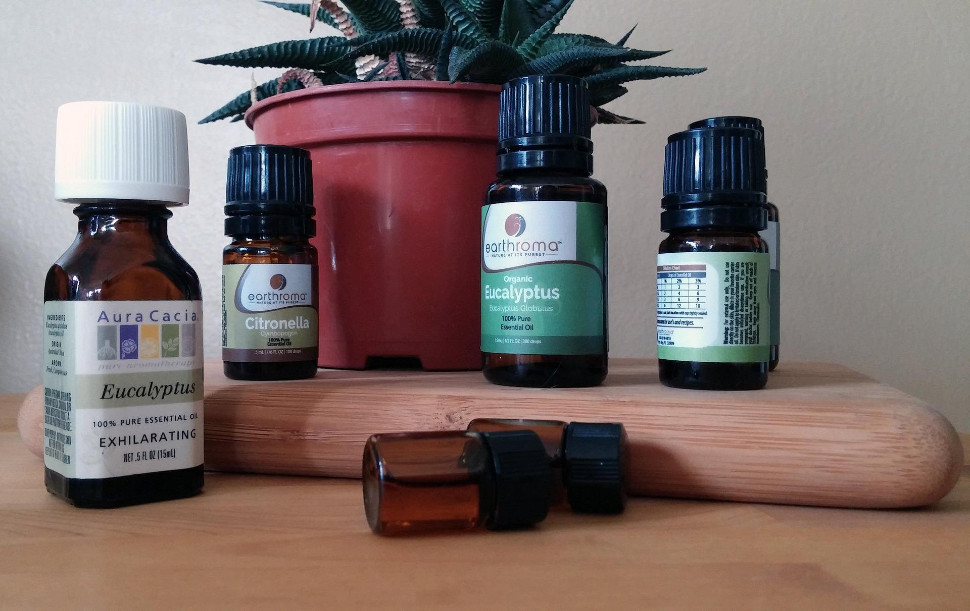 Aceite de eucalipto ¡¡Beneficios para tu salud!!