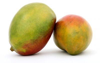 Mango –Fruta con importantes propiedades–